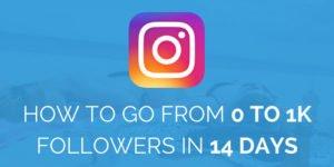Instagram Followers Guide