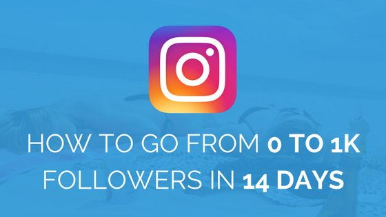 Instagram Followers Guide