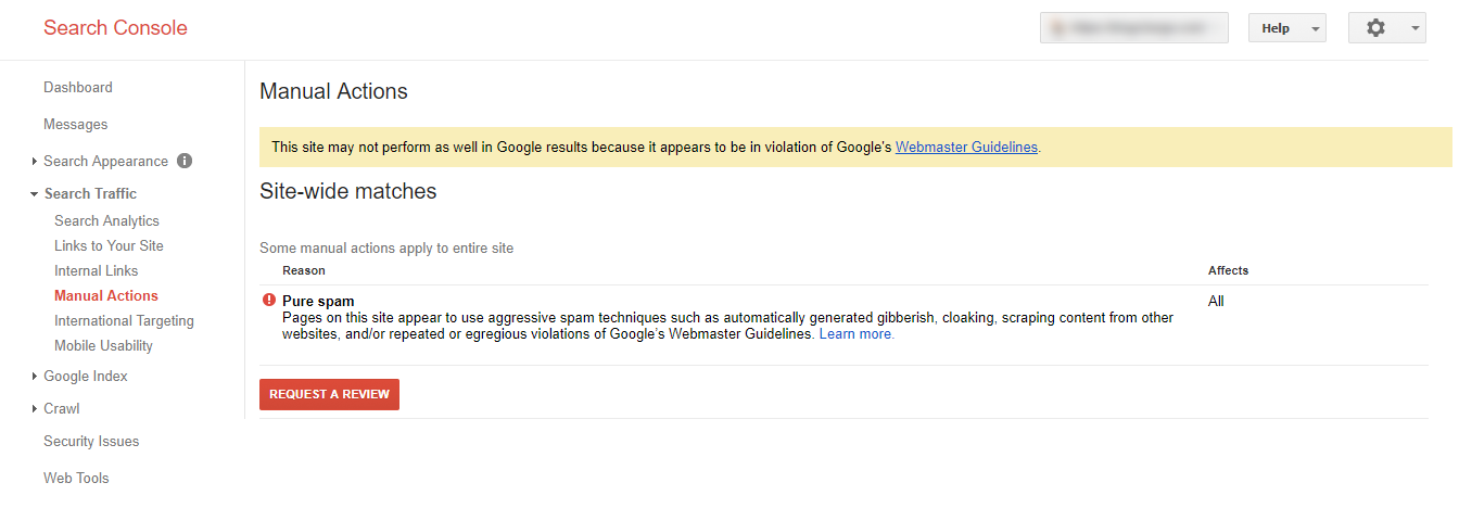 Pure Spam Google Penalty