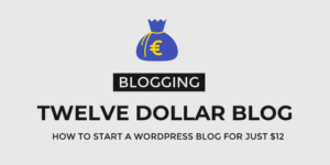 Twelve Dollar Blog - Start A Blog on A Budget